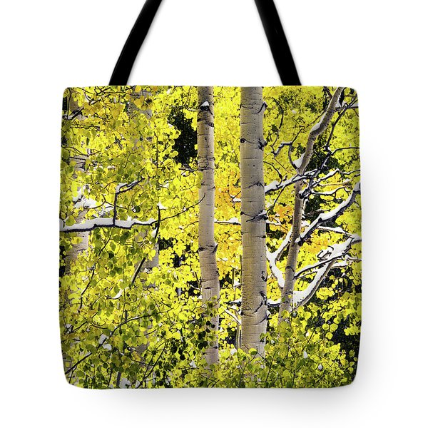 Tote Bag featuring the photograph Autumn Aspens 3 by Leland D Howard