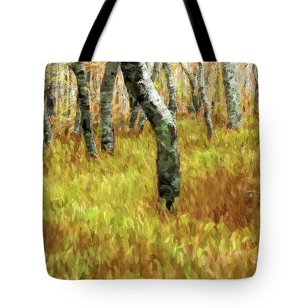 Autumn At Craggy Gardens Ap Tote Bag