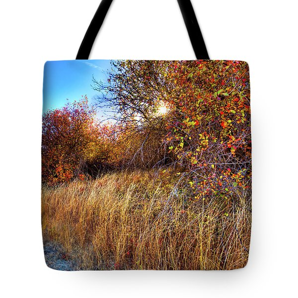 Tote Bag featuring the photograph Autumn At Magpie Forest by David Patterson