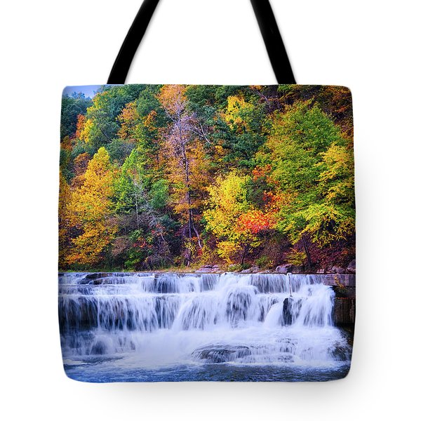 Tote Bag featuring the photograph Autumn Beauty At Lower Taughannock Falls  by Lynn Bauer