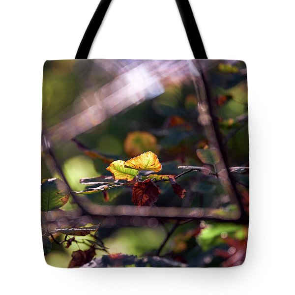 Tote Bag featuring the photograph Autumn Beginnings by Whitney Goodey