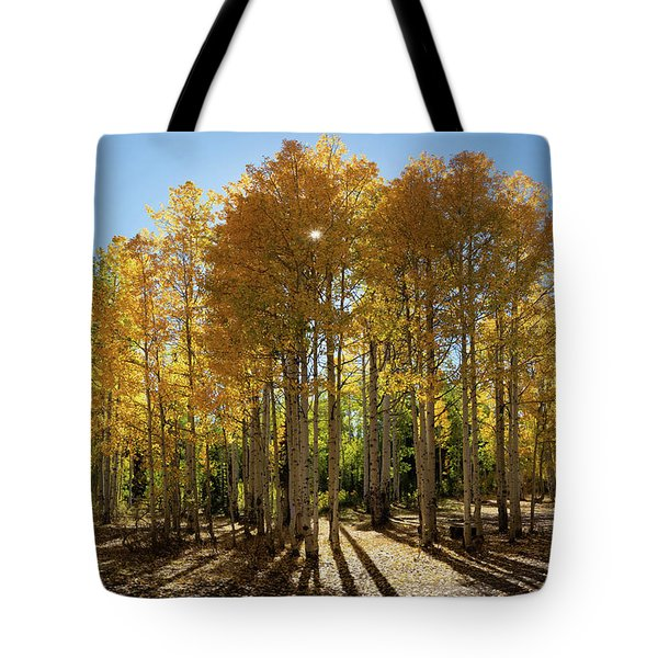 Tote Bag featuring the digital art Autumn Blaze Outside Of Crested Butte, Colorado.  by OLena Art Brand