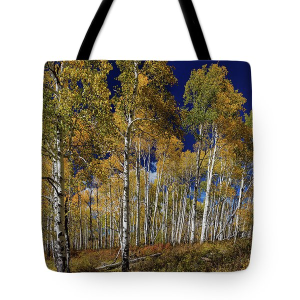 Tote Bag featuring the photograph Autumn Blue Skies by James BO Insogna