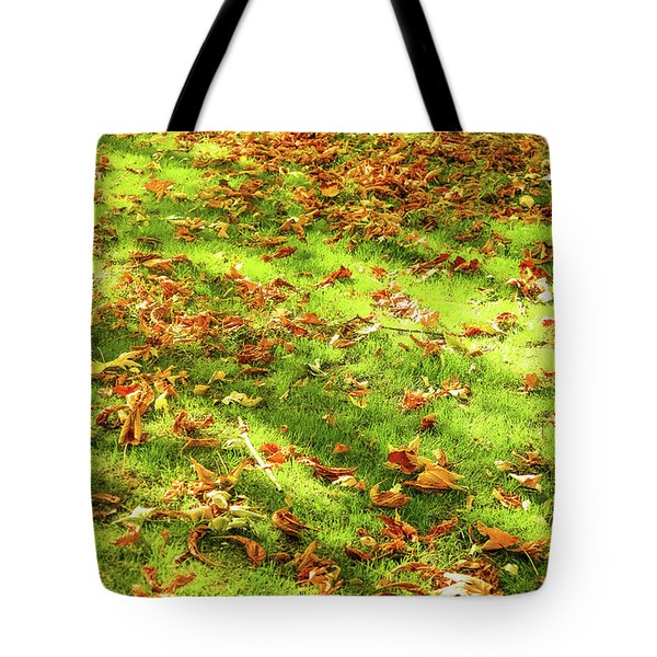 Tote Bag featuring the photograph Autumn Colors Iv by Anne Leven