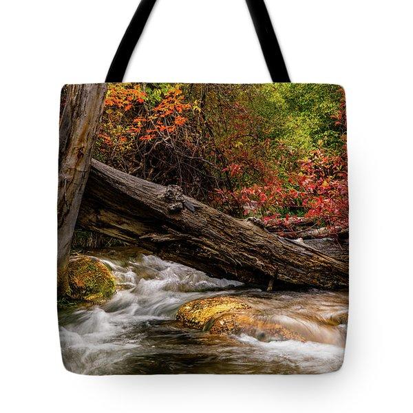 Autumn Dogwoods Tote Bag