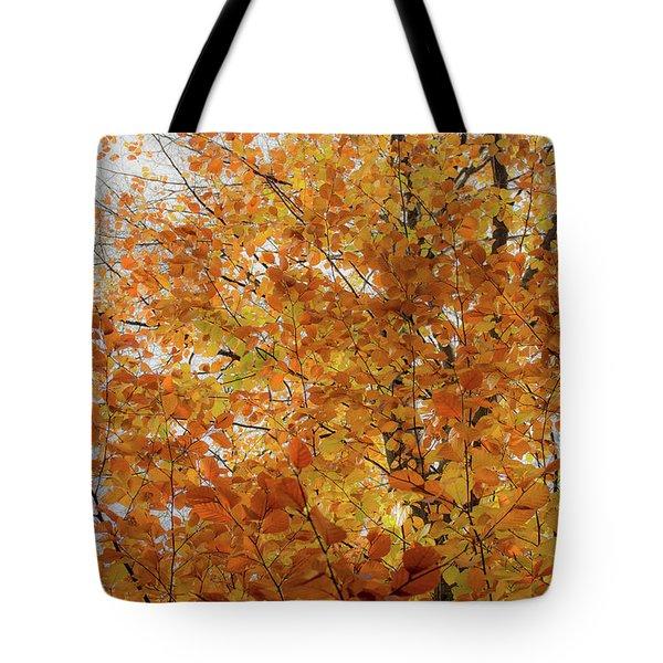 Autumn Explosion 1 Tote Bag