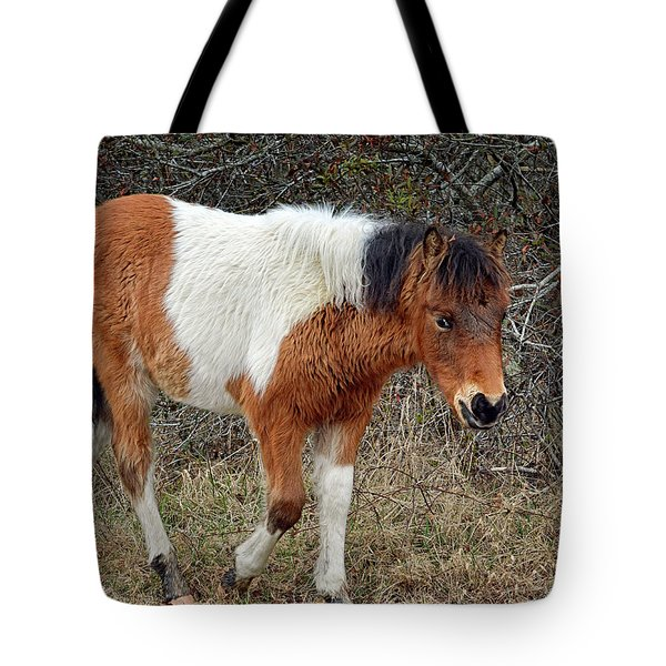 Tote Bag featuring the photograph Autumn Glory N2bhs-ap On Assateague Island by Assateague Pony Photography