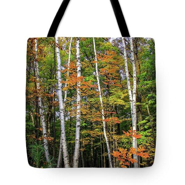 Autumn Grove, Vertical Tote Bag