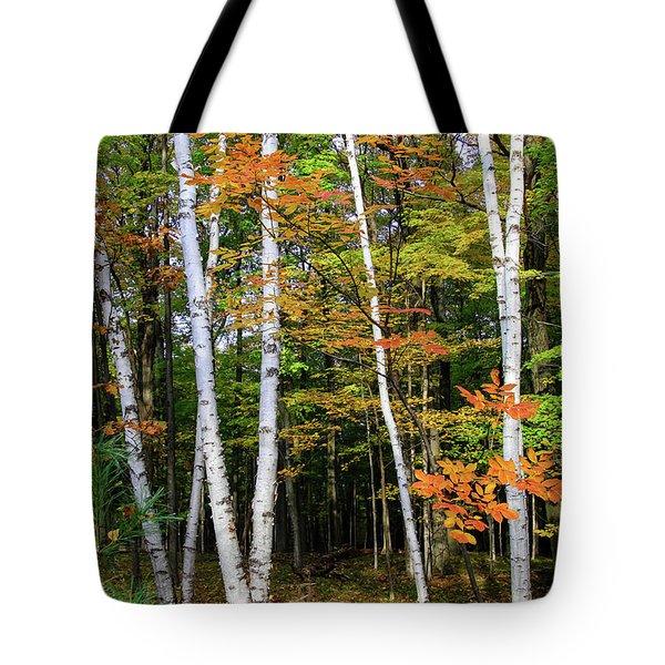 Autumn Grove, Wisconsin Tote Bag