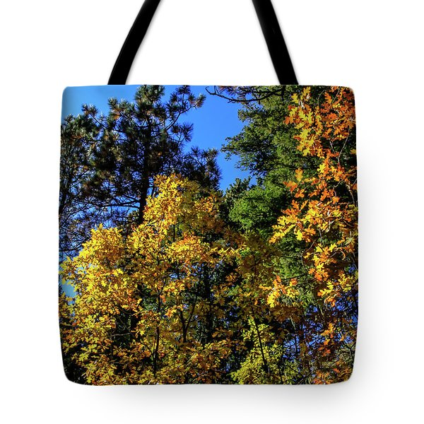 Autumn In Apache Sitgreaves National Forest, Arizona Tote Bag