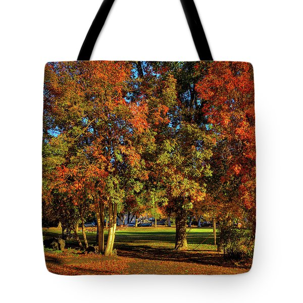 Tote Bag featuring the photograph Autumn In Reaney Park by David Patterson
