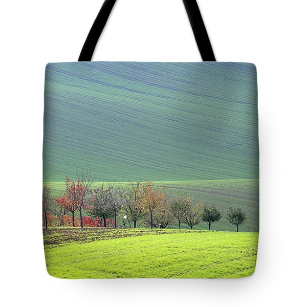 Autumn In South Moravia 18 Tote Bag