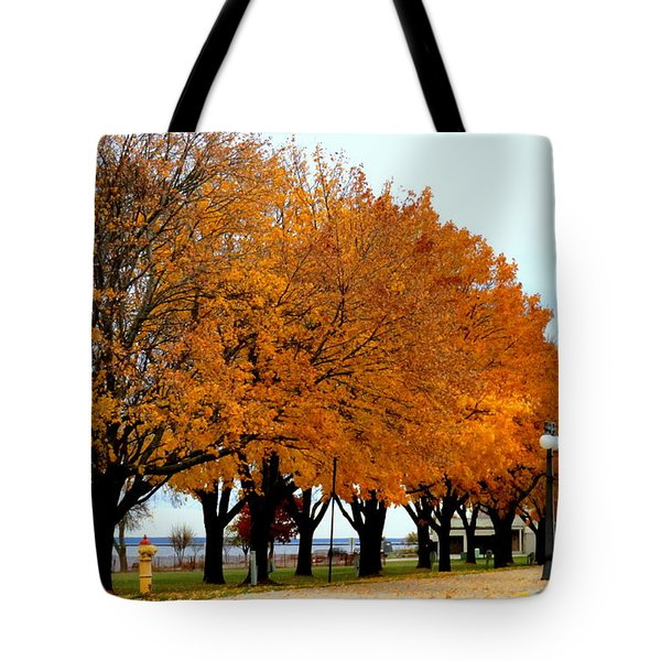 Autumn Leaves In Menominee Michigan Tote Bag