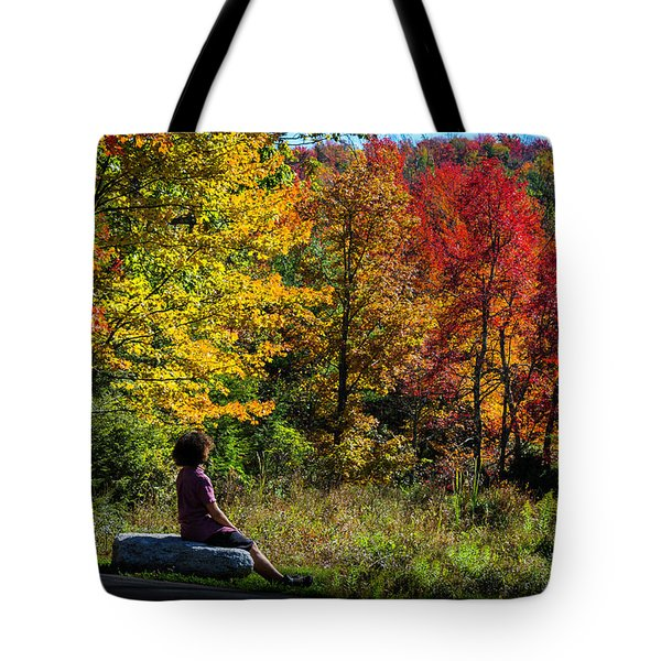 Autumn Leaves In The Catskill Mountains Tote Bag