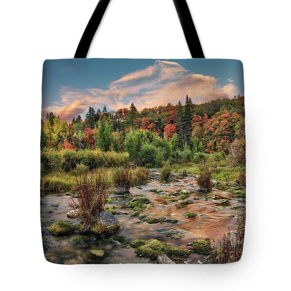 Tote Bag featuring the photograph Autumn Light Reflections by Leland D Howard