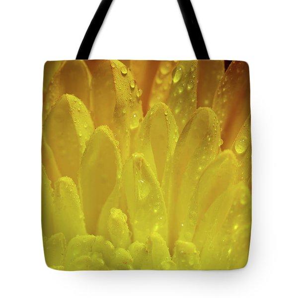 Autumn Macro-1 Tote Bag
