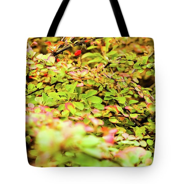 Tote Bag featuring the photograph Autumn Nature II by Anne Leven