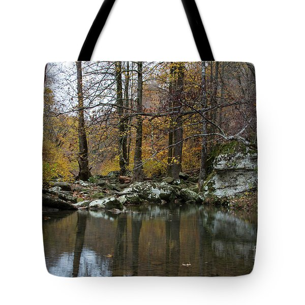 Tote Bag featuring the photograph Autumn On The Kings River by Joe Sparks