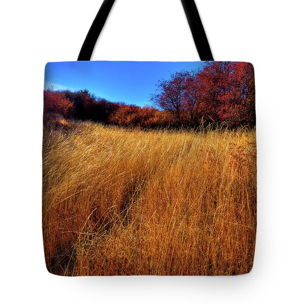 Tote Bag featuring the photograph Autumn Path by David Patterson