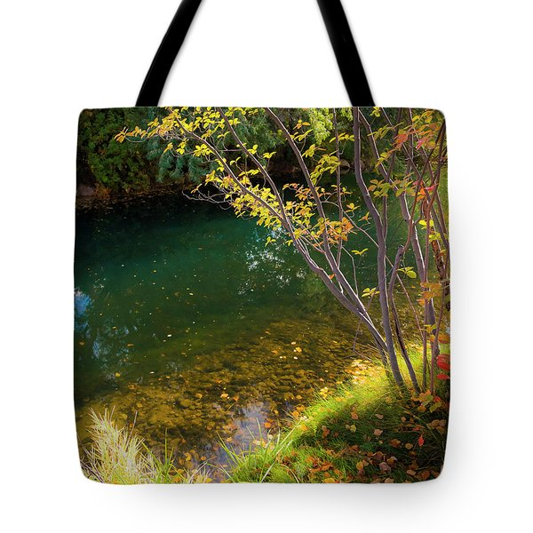 Tote Bag featuring the photograph Autumn Pond by Mark Mille