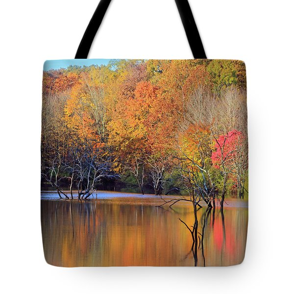 Tote Bag featuring the photograph Autumn Reflections by Angela Murdock