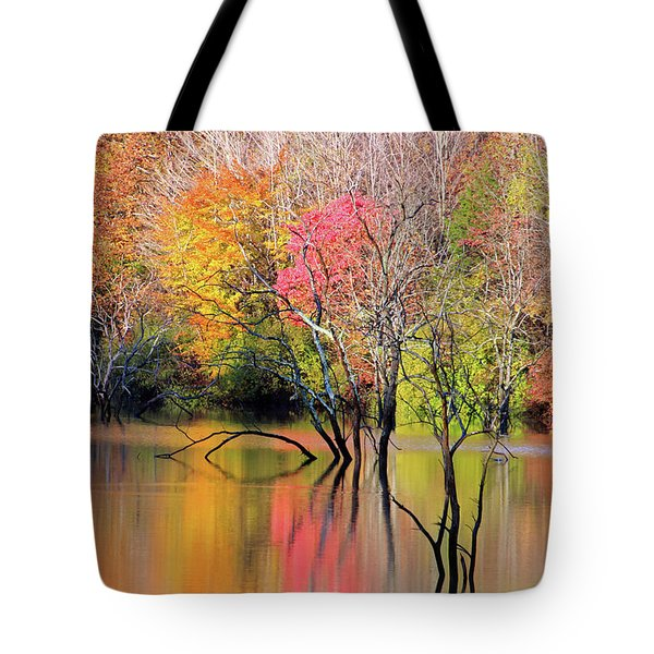 Tote Bag featuring the photograph Autumn Reflections At Alum Creek by Angela Murdock