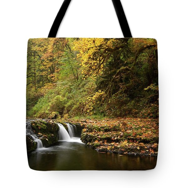 Autumn Scene Tote Bag