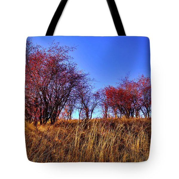 Tote Bag featuring the photograph Autumn Sun by David Patterson
