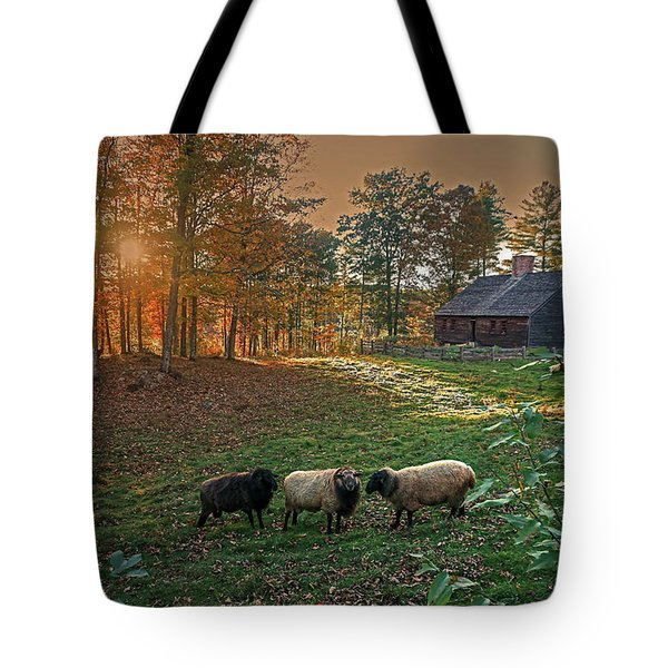 Tote Bag featuring the photograph Autumn Sunset At The Old Farm by Wayne Marshall Chase