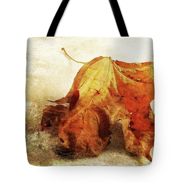 Tote Bag featuring the photograph Autumn Texture by Randi Grace Nilsberg