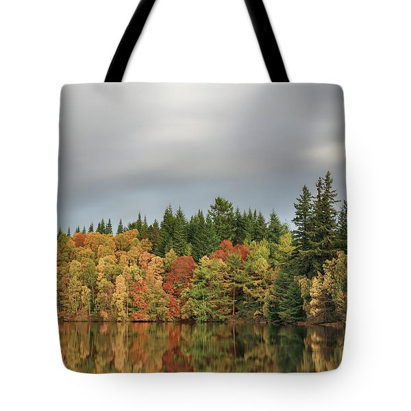 Autumn Tree Reflections Tote Bag