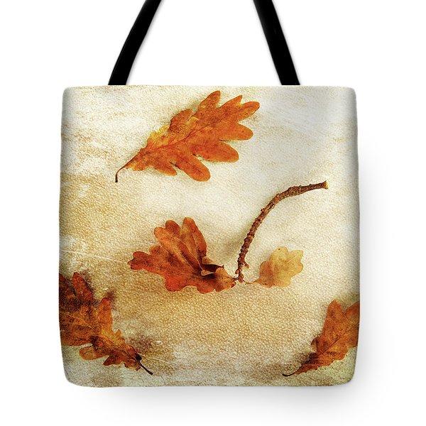 Tote Bag featuring the photograph Autumn Twist by Randi Grace Nilsberg