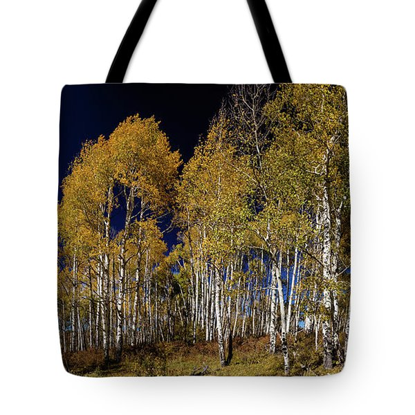 Tote Bag featuring the photograph Autumn Walk In The Woods by James BO Insogna