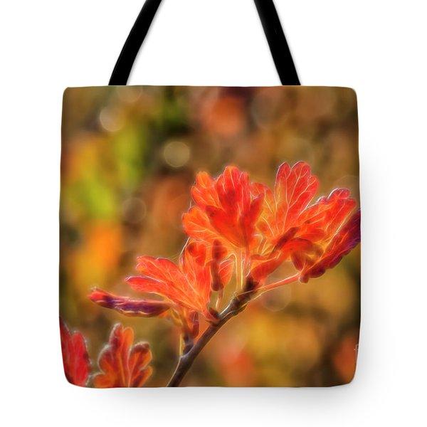 Autumn's Glow 3 Tote Bag