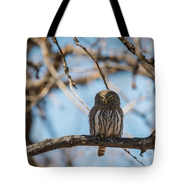 Tote Bag featuring the photograph B34 by Joshua Able's Wildlife