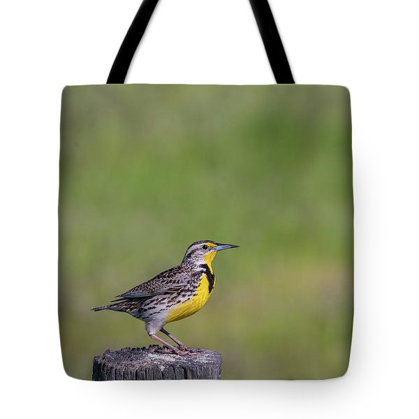 Tote Bag featuring the photograph B39 by Joshua Able's Wildlife