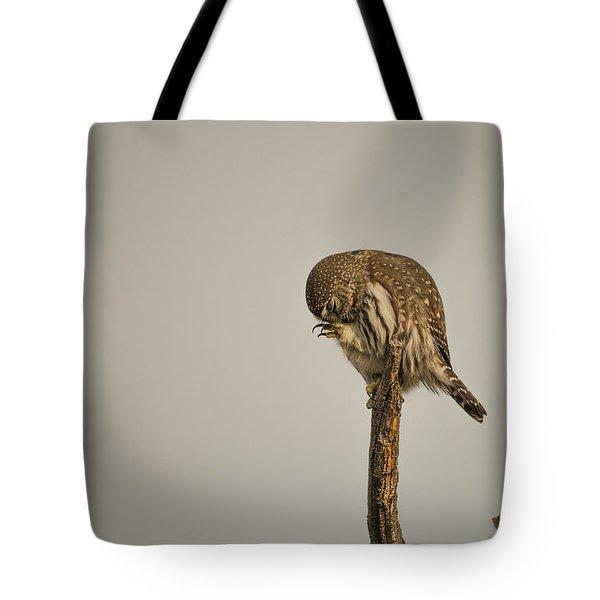 B41 Tote Bag