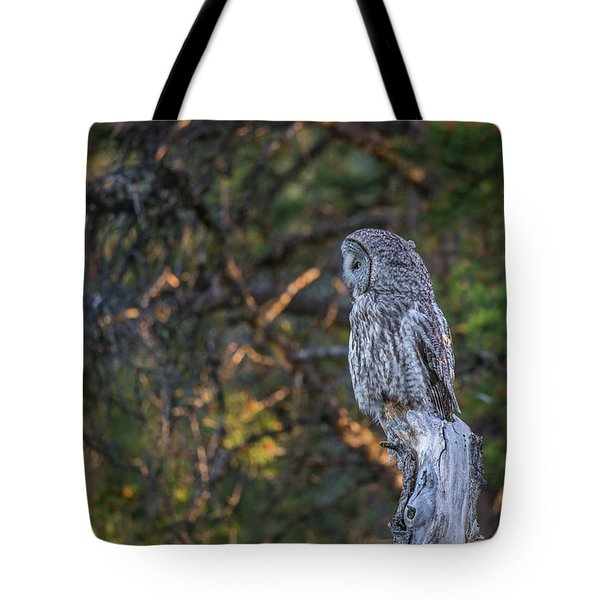 Tote Bag featuring the photograph B46 by Joshua Able's Wildlife