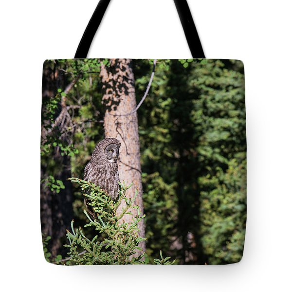 Tote Bag featuring the photograph B50 by Joshua Able's Wildlife