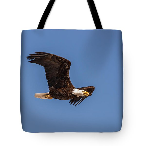 Tote Bag featuring the photograph B8 by Joshua Able's Wildlife