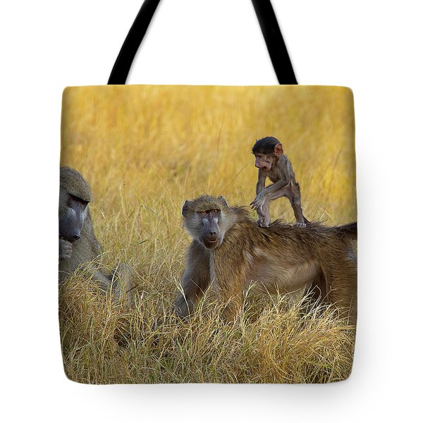 Baboons In Botswana Tote Bag