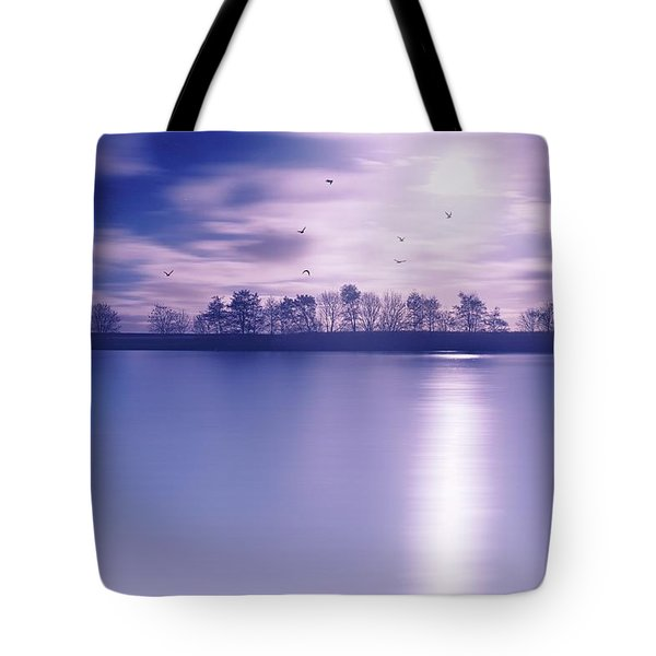 Back To The Moon Tote Bag
