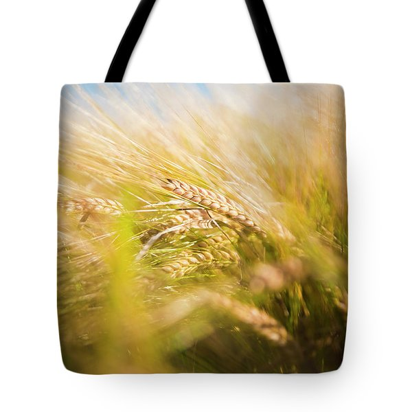 Background Of Ears Of Wheat In A Sunny Field. Tote Bag
