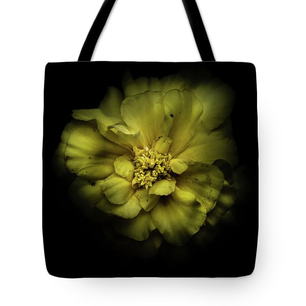 Backyard Flowers 41 Color Version Tote Bag