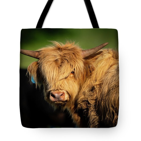 Tote Bag featuring the photograph Bad Hair Day 4 X 5 by Jeff Phillippi
