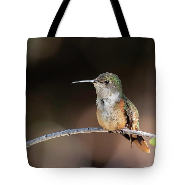 Tote Bag featuring the photograph Bahama Woodstar by Thomas Kallmeyer