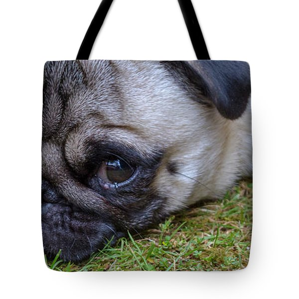Bailey Tote Bag