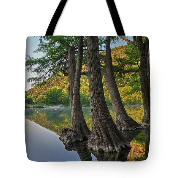 Bald Cypress Trees In River, Frio Tote Bag