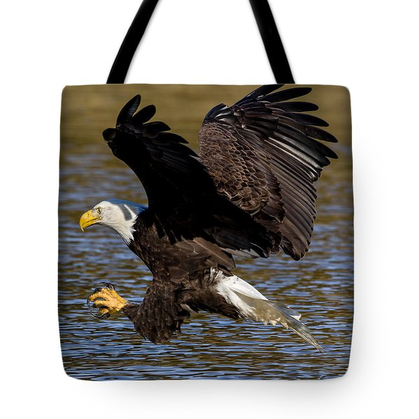 Tote Bag featuring the photograph Bald Eagle Fishing On The James River by Lori Coleman