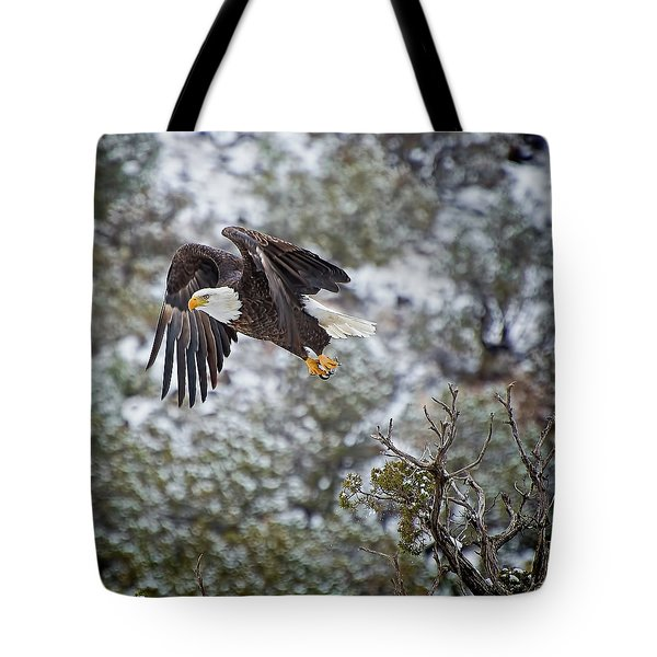 Bald Eagle Flight Tote Bag